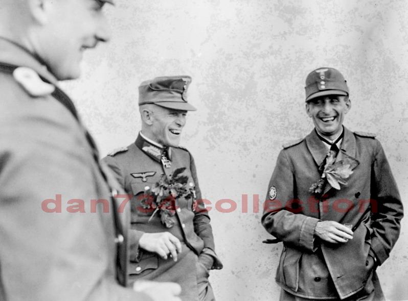 1-я горнострелковая дивизия вермахта (1gebirgs-division)